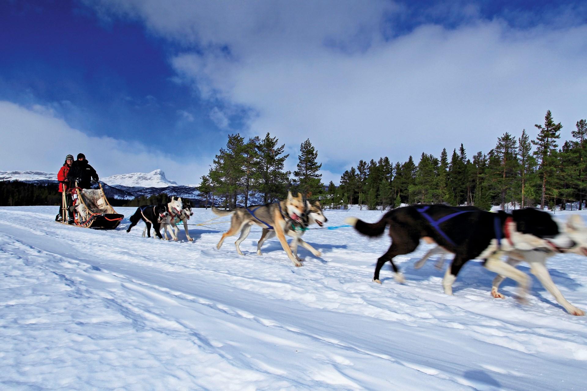 Skigebied Beitostølen