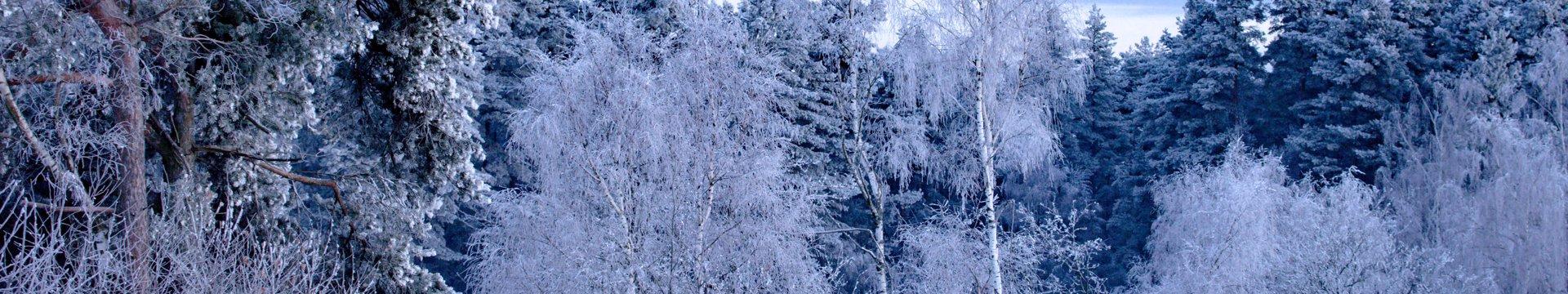Skigebied Lipno nad Vltavou