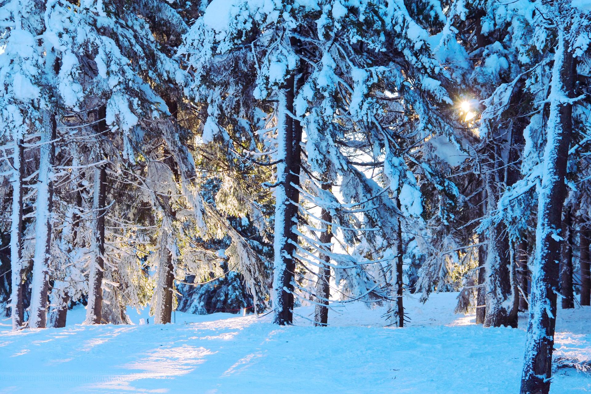Skigebied Spindleruv Mlyn
